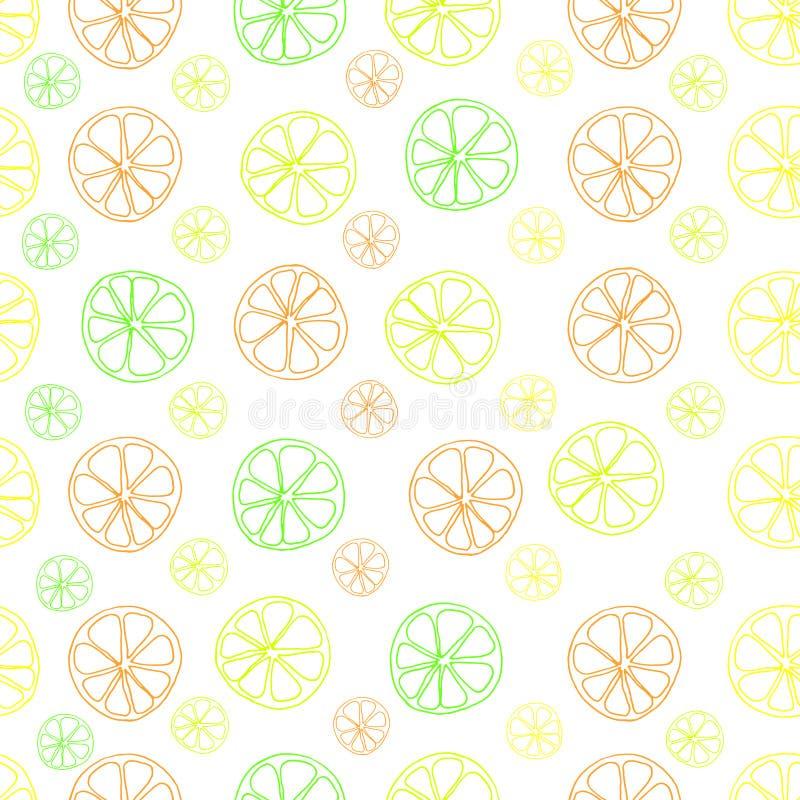 De kalk vector naadloos patroon van de citrusvruchtencitroen op wit vector illustratie