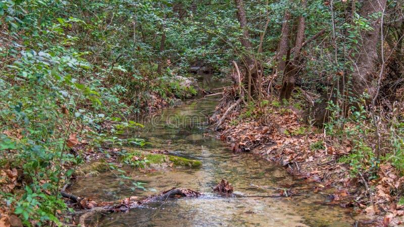 De kalme sectie van kleine rivierstroom met daling kleurde bladeren die omhoog op banken worden opgestapeld stock foto