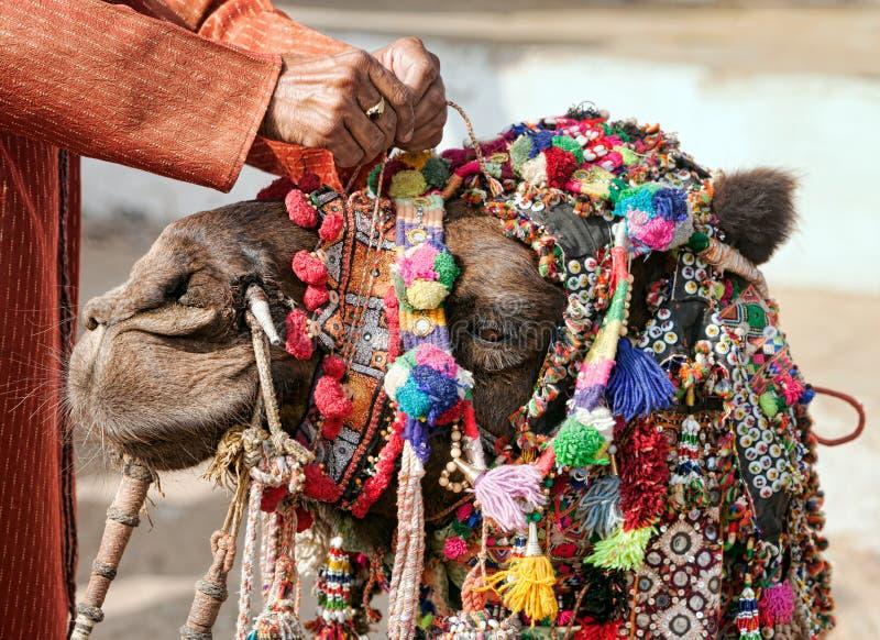 De kameel van de decoratie bij de Markt Pushkar stock afbeeldingen