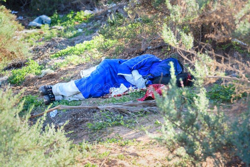 De kameelbestuurder slaapt in de struiken Agadir marokko stock foto