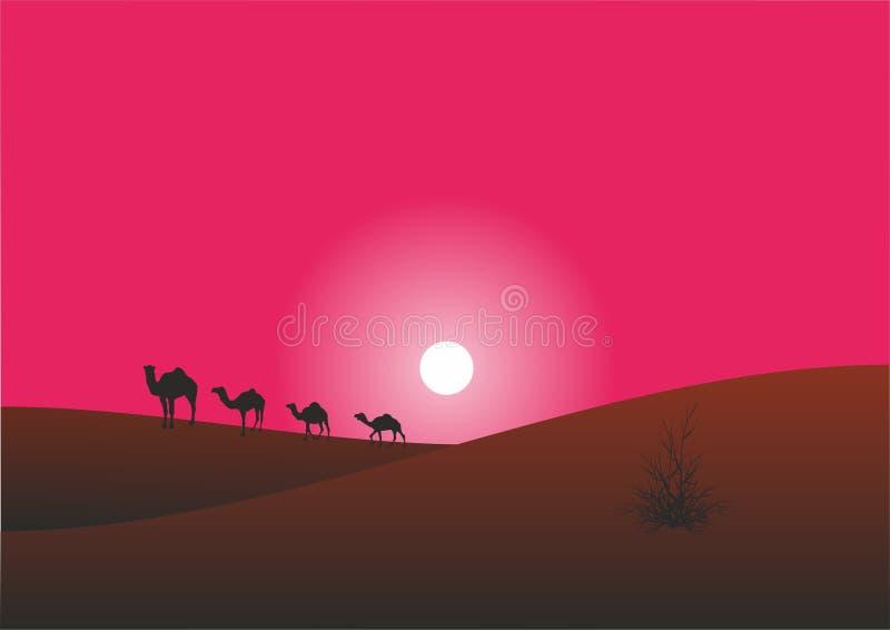 De kamelen zijn in de woestijn royalty-vrije illustratie