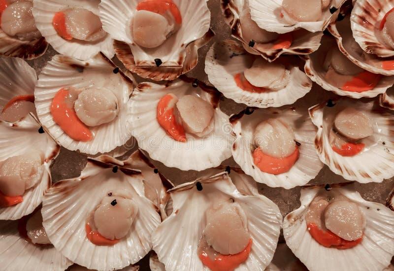 De kammosselen voor verkoop in Rialto vissen markt - Venetië, Italië, Europa, 2016 September stock afbeeldingen