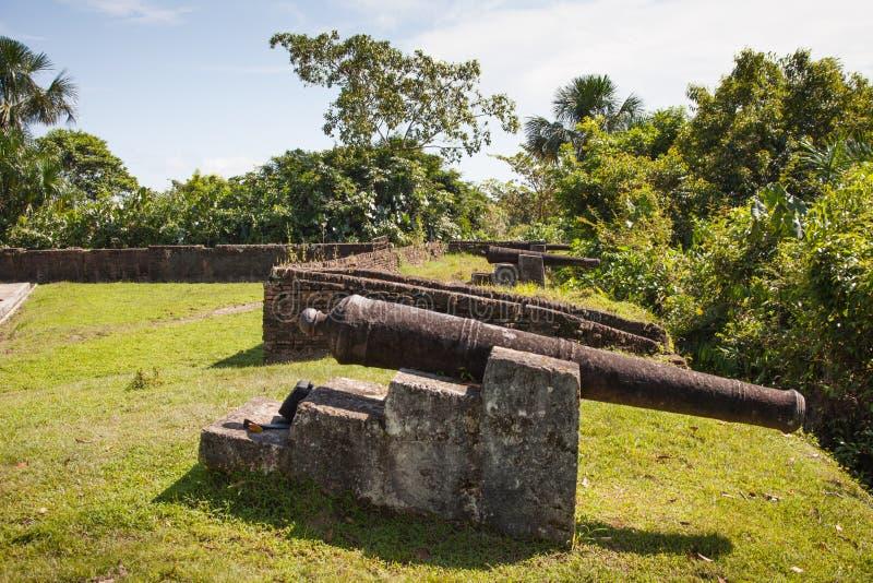 De kanonnen van de vesting van Fort Zeelandia, Zuid-Amerika, Guyana royalty-vrije stock afbeelding
