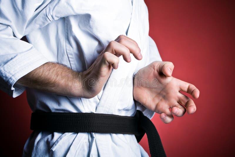 De karate van de praktijk, oefening thuis stock afbeeldingen