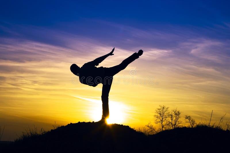 De karate van de sport stock afbeelding