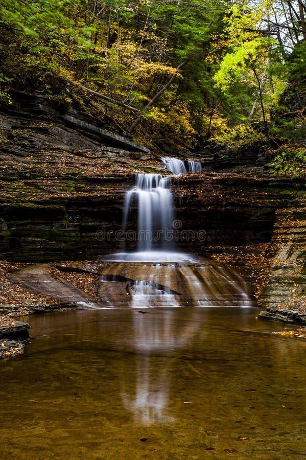 De karnemelk valt het Park van de Staat - Autumn Waterfall - Ithaca, New York stock afbeeldingen