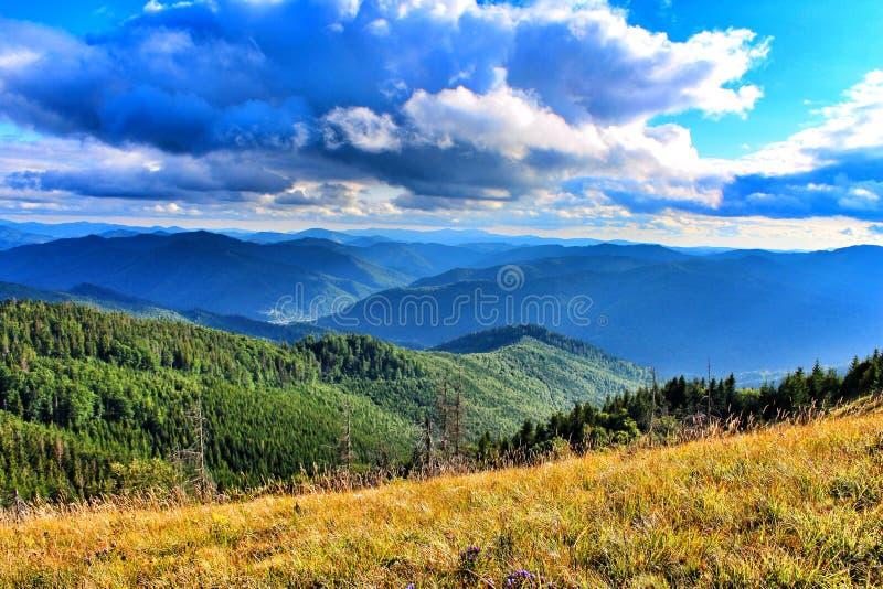 De Karpaten Mountais, de Oekraïne stock fotografie