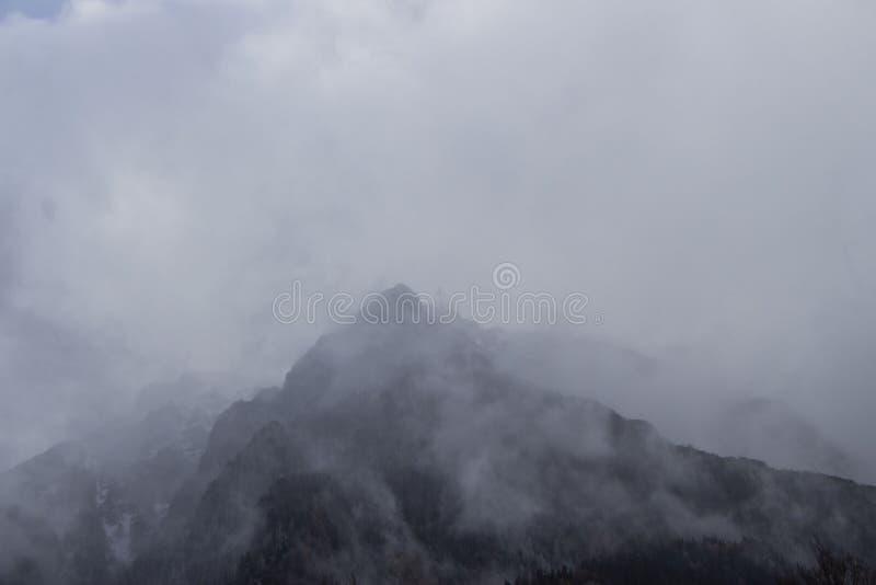 De Karpatische Bergen, Sinaia stock fotografie