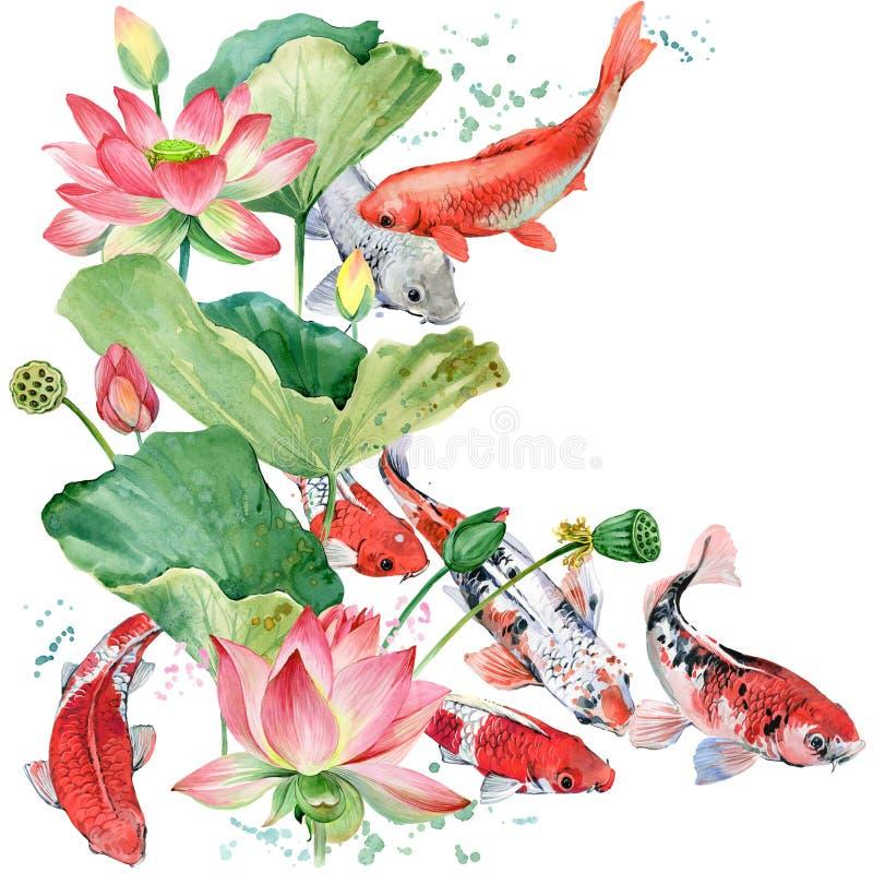 De karper van waterverfkoi en lotusbloembloem van achtergrond waterverfvissen illustratie vector illustratie