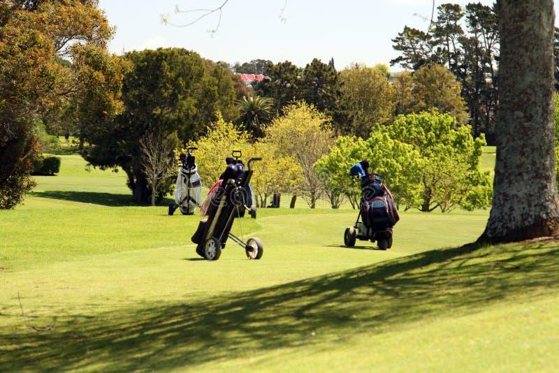 De karren van het golf royalty-vrije stock foto