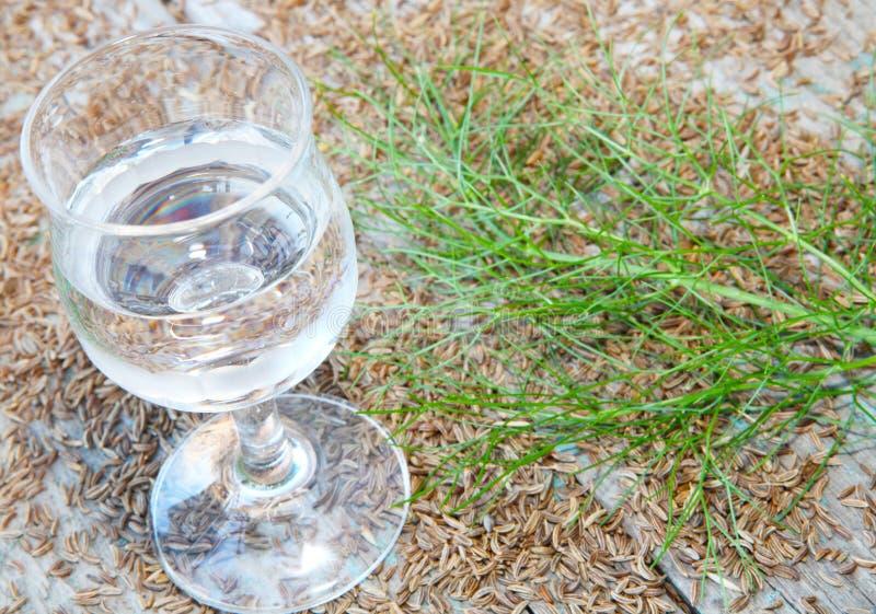 De karwijalcoholische drank wordt gediend royalty-vrije stock fotografie