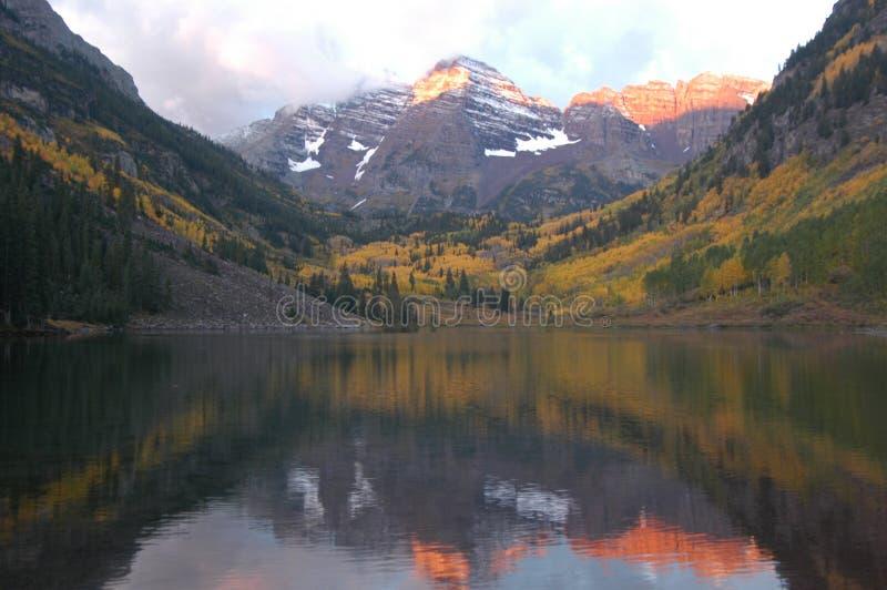 De kastanjebruine Esp Colorado van Klokken royalty-vrije stock afbeelding