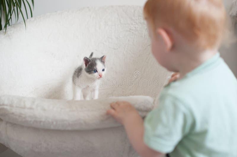De kat bekijkt de baby stock afbeeldingen