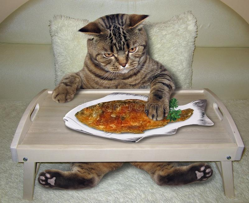 De kat eet gebraden vissen op het bed stock afbeelding