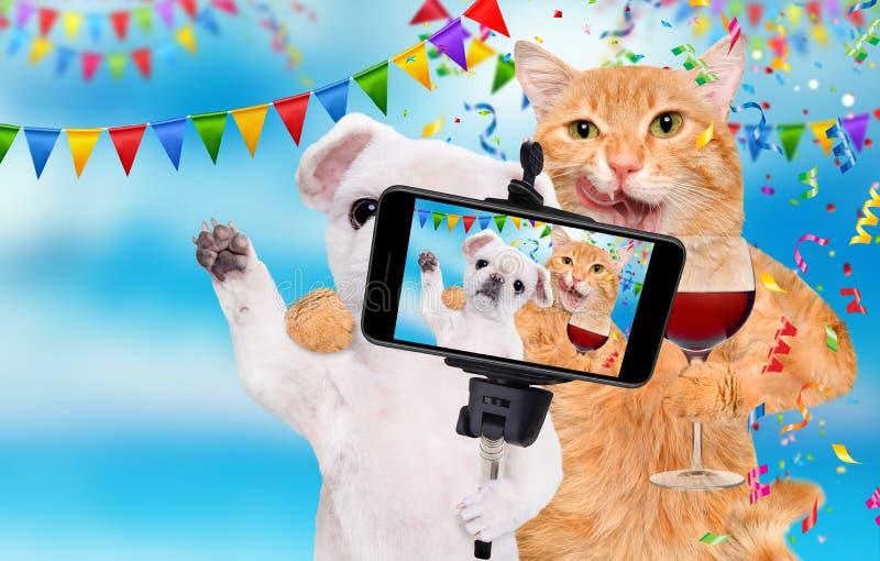 De kat en de hond vieren met wijnglas stock fotografie