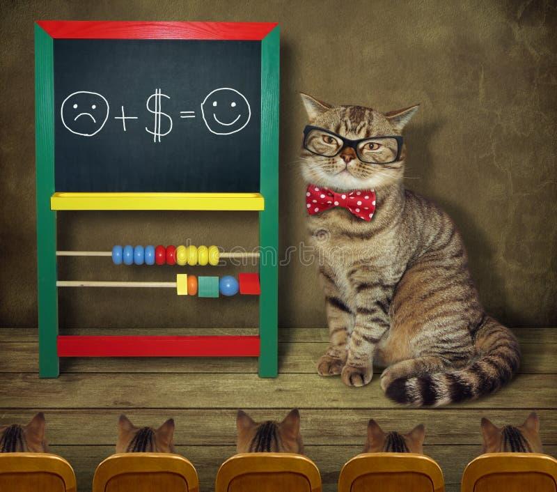 De kat in glazen onderwijst grappige wiskunde royalty-vrije stock afbeelding
