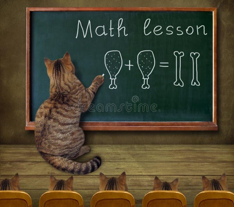 De kat onderwijst wiskunde aan studenten royalty-vrije stock afbeeldingen