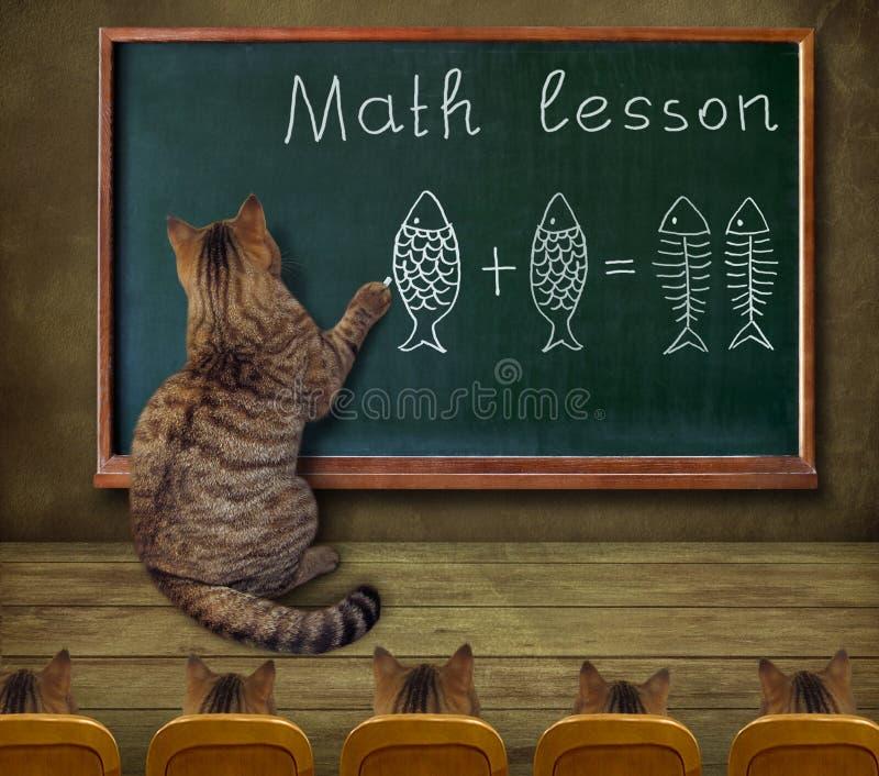 De kat onderwijst wiskunde aan studenten 2 stock foto's