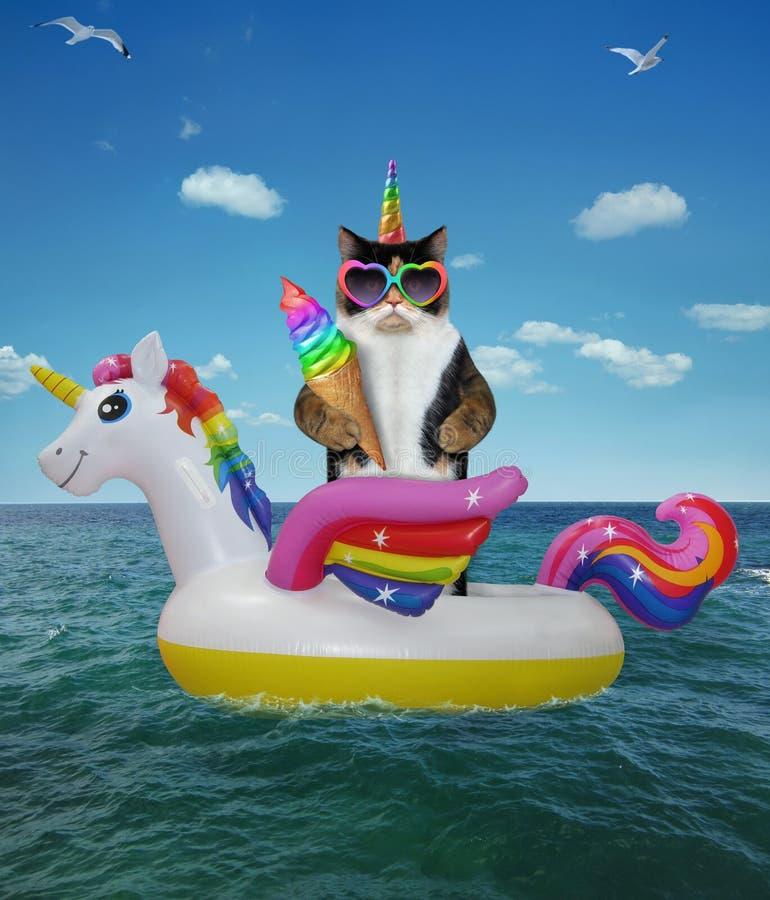De kat unicirn eet regenboogroomijs 2 royalty-vrije stock fotografie
