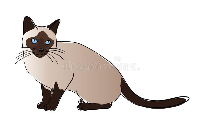 De kat van Siam stock illustratie