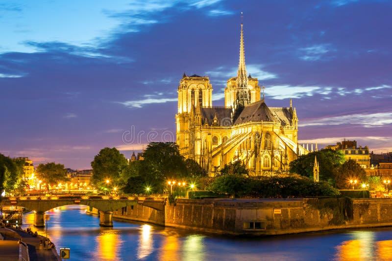 De Kathedraal Parijs van Notre Dame stock fotografie