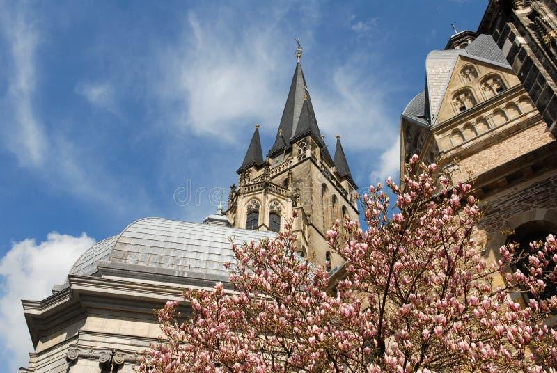 De kathedraal van Aken in de lentetijd met een bloeiende magnoliaboom stock afbeeldingen