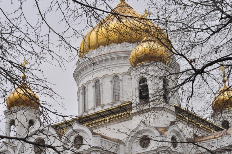 De kathedraal van Christus de Verlosser royalty-vrije stock fotografie