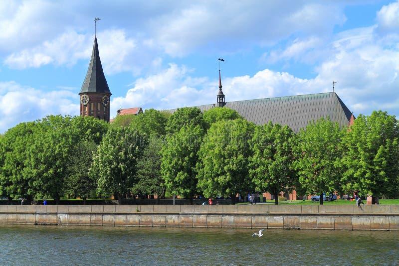 De Kathedraal van Konigsberg stock foto