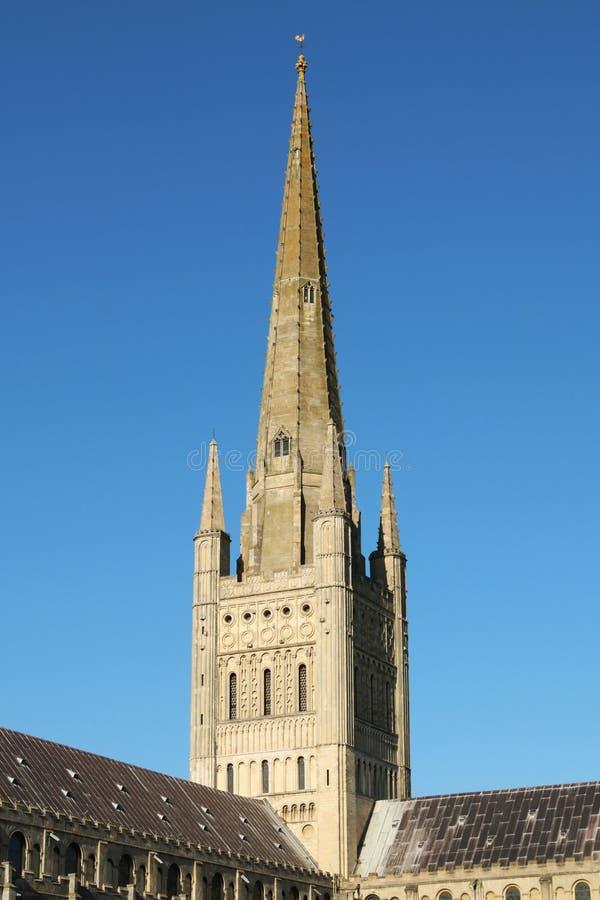 De Kathedraal van Norwich stock fotografie