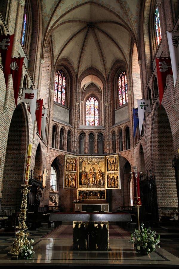 De kathedraal van Poznan stock afbeelding