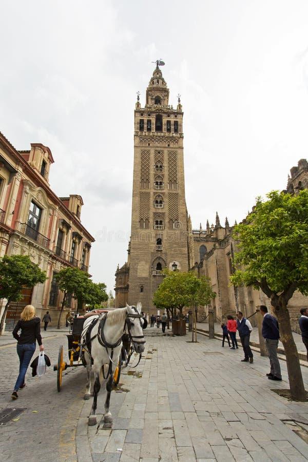 De Kathedraal van Sevilla met de Giralda-meningen van Piazza Virg royalty-vrije stock afbeelding