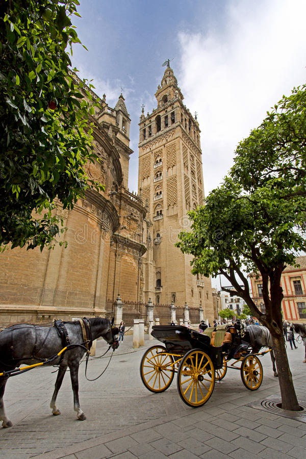De Kathedraal van Sevilla met de Giralda-meningen van Piazza Virg royalty-vrije stock foto