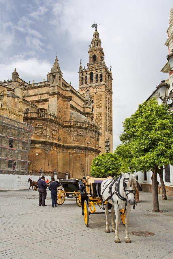 De Kathedraal van Sevilla met de Giralda-meningen van Piazza Virg stock afbeeldingen
