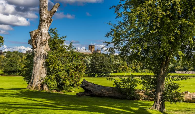 De Kathedraal van St Albans, het UK in zomer stock foto