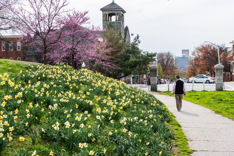 De katholieke kerk van heilige elizabeth van pattersonpark in Baltimore stock fotografie