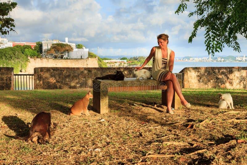 De katten en de vrouw van San Juan royalty-vrije stock fotografie