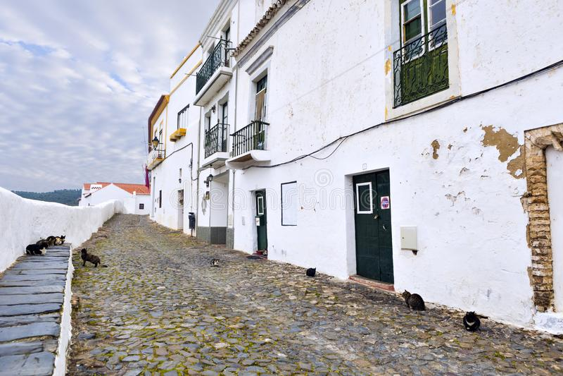 De katten op een typische engte cobbled straat in de oude stad van M stock afbeelding