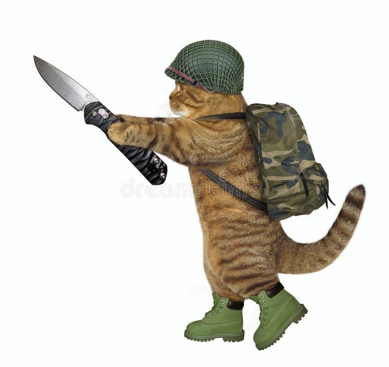 De kattenmilitair houdt een knipmes royalty-vrije stock foto