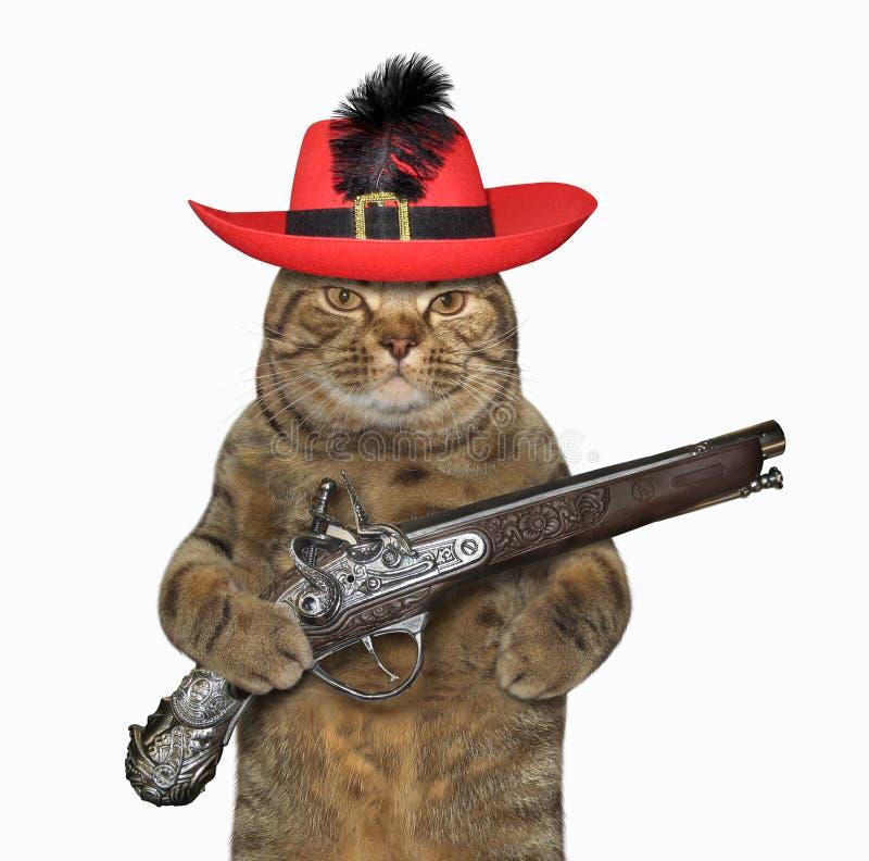 De kattenstrijder houdt een pistool 2 royalty-vrije stock foto's