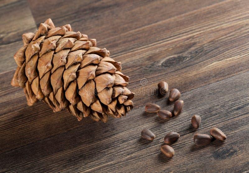 De kegel en de noten van de ceder royalty-vrije stock afbeelding