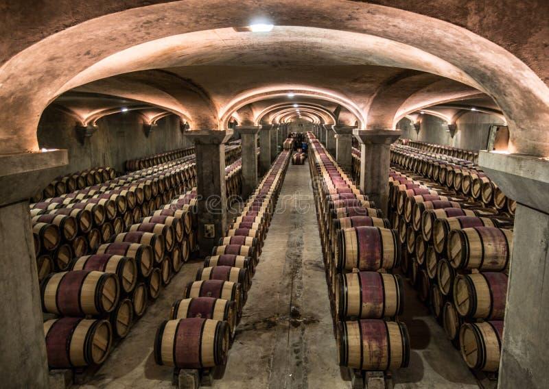 De kelder van de Chateau margaux wijnmakerij, Bordeaux, Frankrijk stock foto