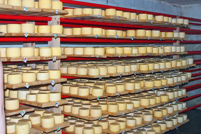 De kelder van de kaas royalty-vrije stock fotografie