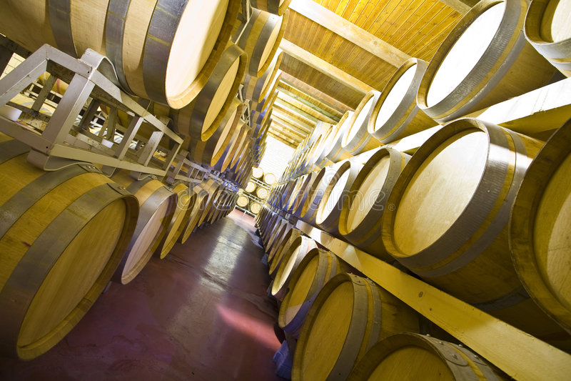 De kelder van de wijn stock fotografie