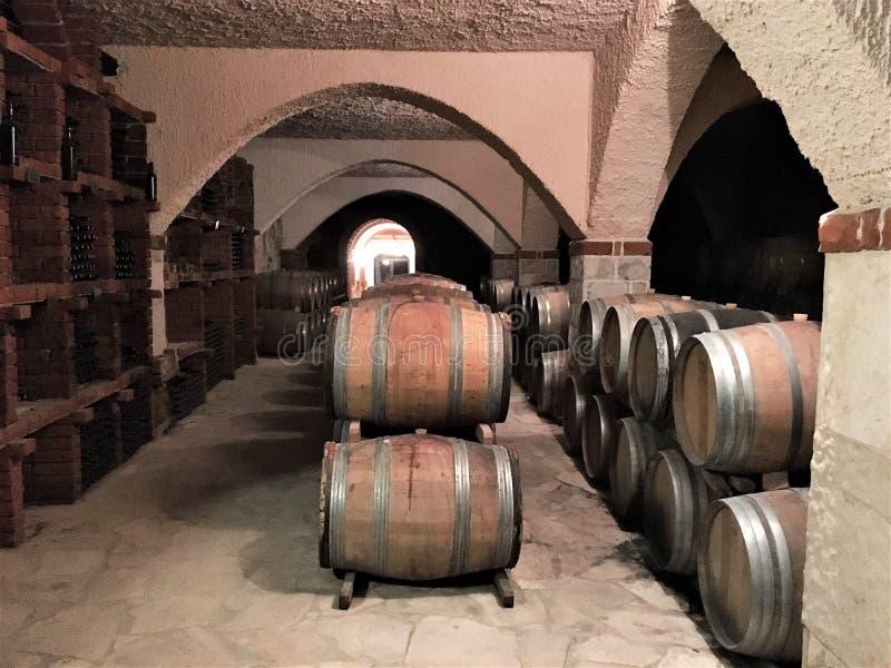 De kelder van de wijn stock afbeeldingen