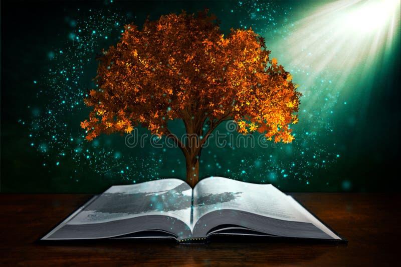 De kennis is macht royalty-vrije stock afbeelding