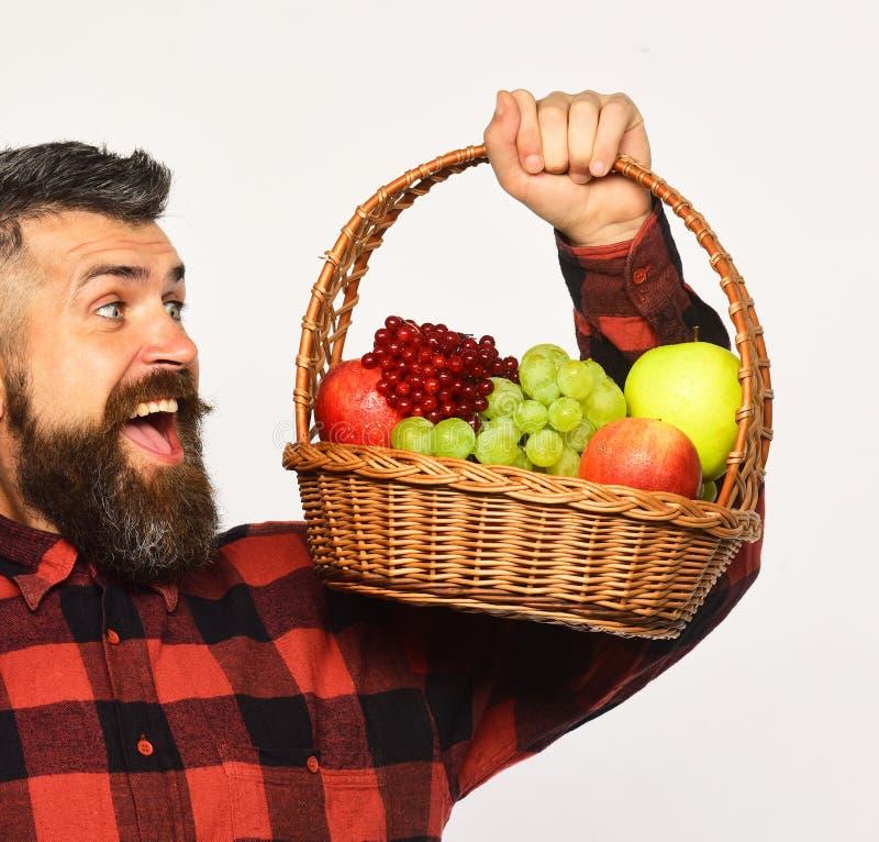 De kerel houdt inlands de de oogst Landbouw en herfst gewassenconcept royalty-vrije stock fotografie