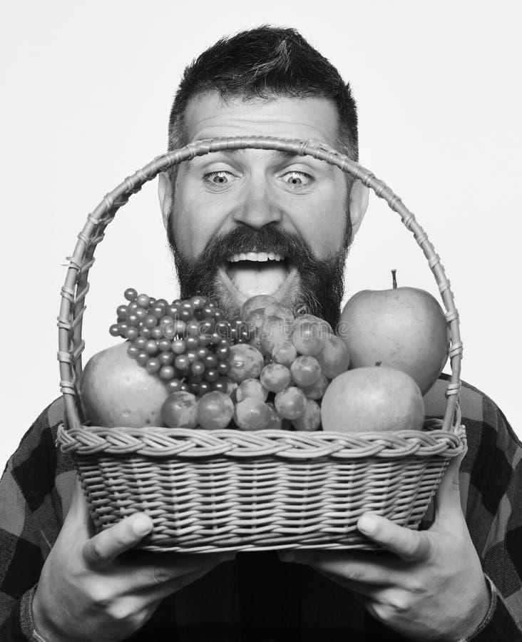 De kerel houdt inlands de de oogst Landbouw en herfst gewassenconcept stock foto