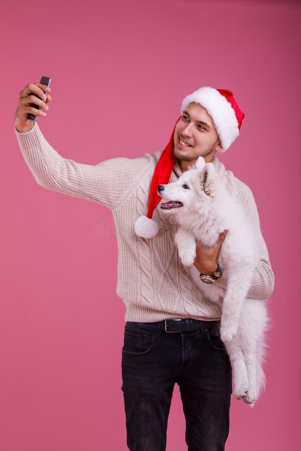 De kerel maakt selfie met van hem samoyed en kijkend allebei in de camera op een roze achtergrond royalty-vrije stock afbeeldingen