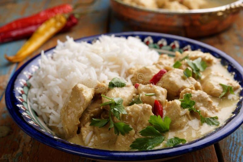 De Kerrie van de kip met rijst stock afbeelding