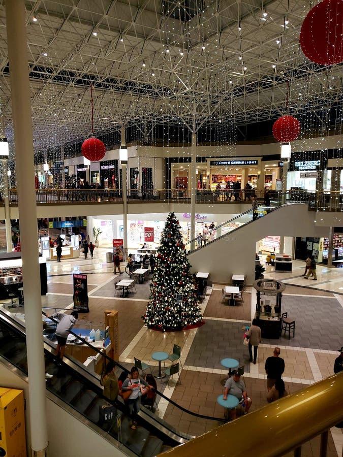 De Kerstboom van het voedselhof royalty-vrije stock foto
